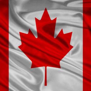 My Negocio .Shop Canadá