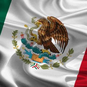 My Negocio .Shop México